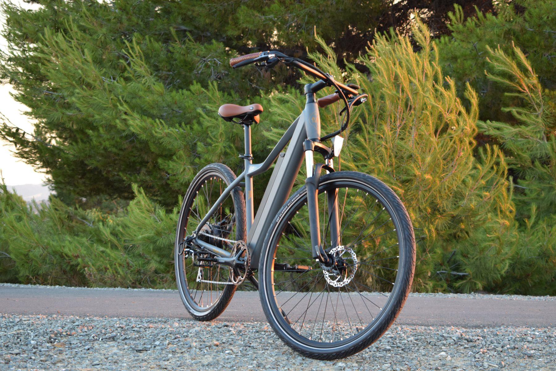rideiup electric bikes